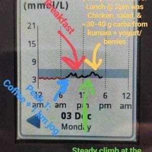 glucose monitor 8